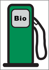 current biodiesel price